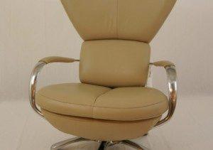 Leolux fauteuil model Formi Phase 11