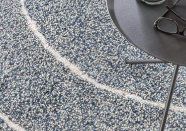 Millenerpoort blauw-wit-1